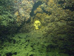 Totenkopf in der Traun